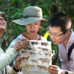 Green Tours-Tombopata Birding & Nature Tour