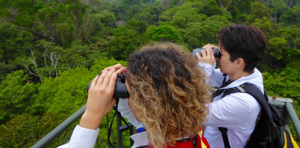 Green Tours-Tombopata Birding & Photography Tour