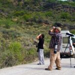 Green Tours – Tours 4 – The endemics paradise tour – Blue Sky Wildlife