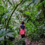 Hiking-through-the-cloud-forest