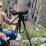 Iberian Lynx Land Photography Tours