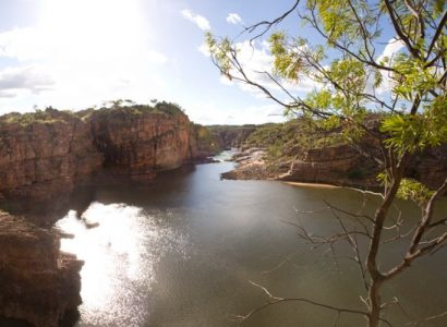 NT Immersions - Wildlife Tours
