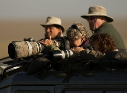 professionally-led-photo-safari