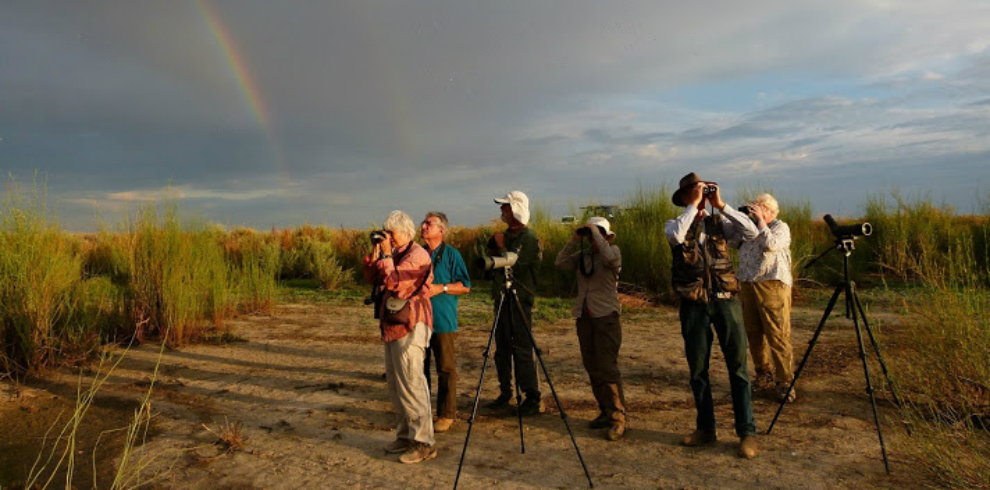 Great Southern Birding Tour 3