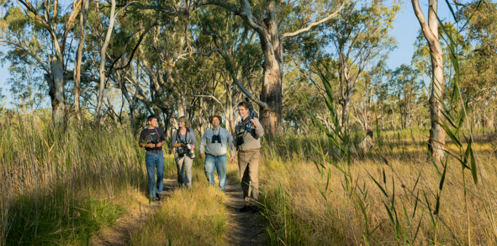 Great Southern Birding Tour 2
