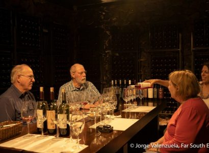 Birds & Wines of Chile & Argentina
