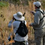 Nature Travel Namibia - Guiding