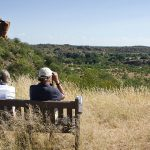 Enjoying the views, Mapungubwe NP