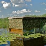Bird Photo Hide Kondor Ecolodge Kiskunsag National Park Hungary