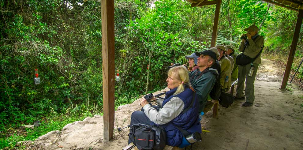 Birders during the Birding North Peru tour