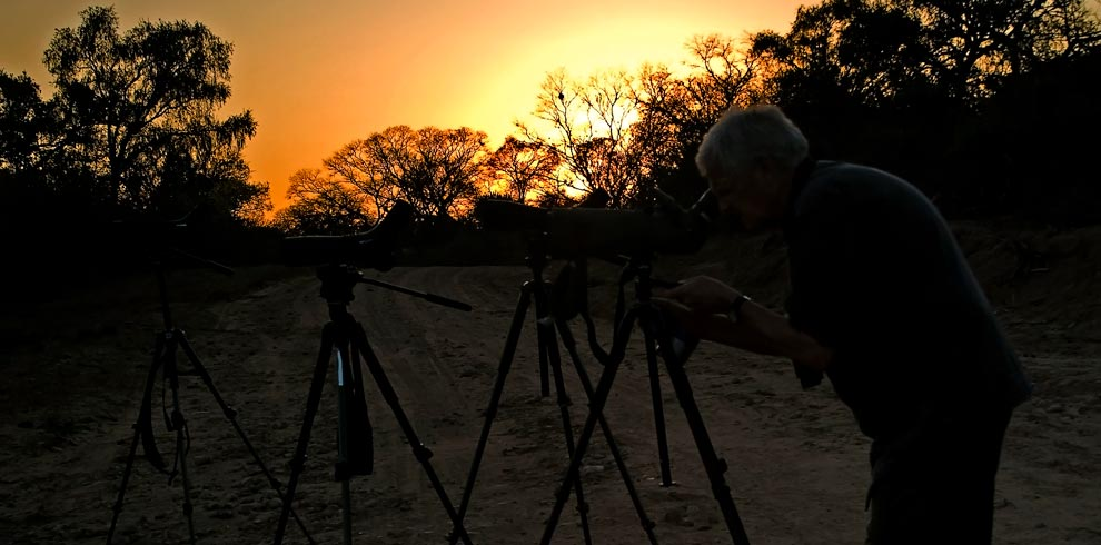 Birding-Chaco-Dawn-Bolivia-Naturally