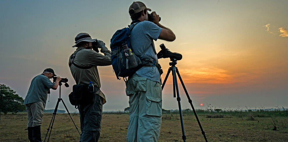 Birding-Eastern-Lowlands-Bolivia-Naturally