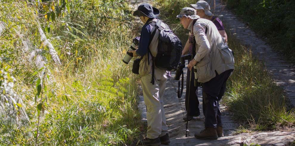 Birders and nature photographers during a birding journey in Santa Marta Mountains Colombia