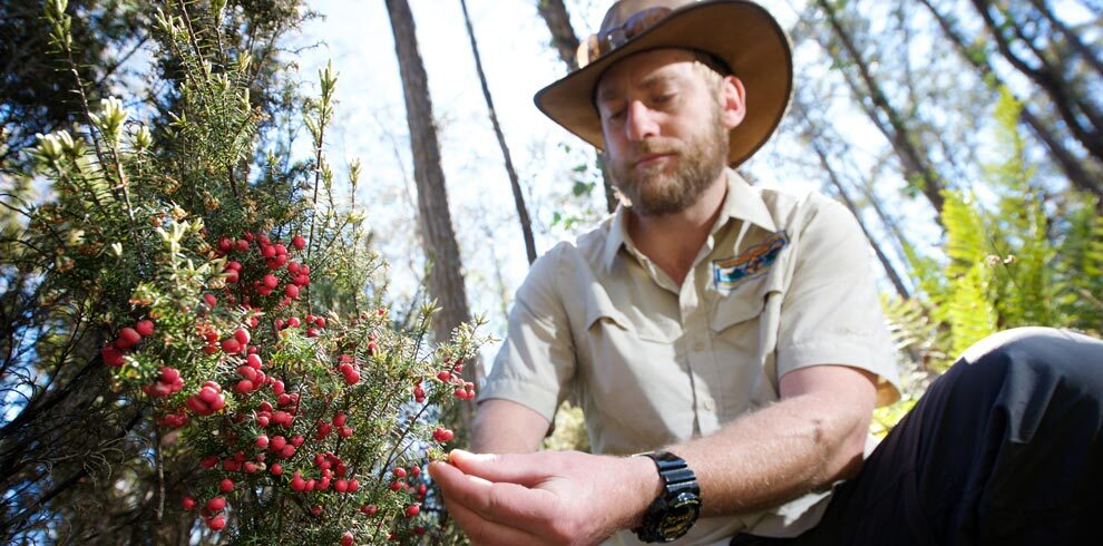 Ben in the Tasmanian forests