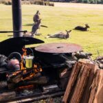 Campfire dining on nocturnal wildlife tour